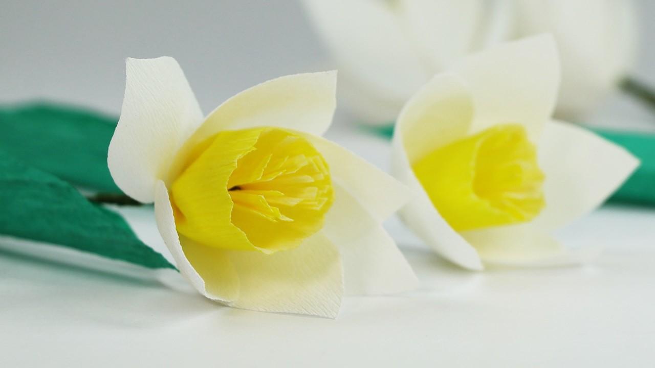 DIY Paper Flowers - White Yellow Crepe Paper Flower Easy Tutorial