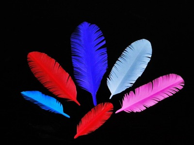 DIY How to Make colorful Paper Feather in - 5 Minutes
