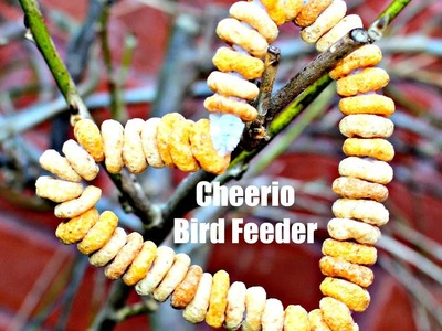 Easy Kids Craft - Cherrios bird feeder - fun activities for toddlers and preschoolers