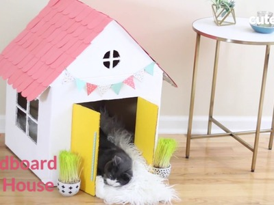 How To Build A Cat House - Cuteness.com