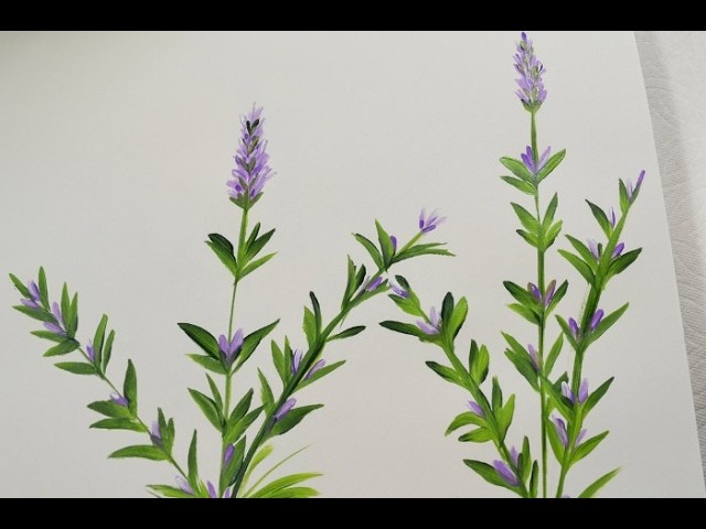 How to Paint Lavender