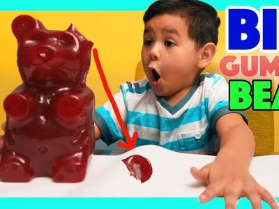 WORLD'S BIGGEST GUMMY BEAR DIY gummy bear, Gummies worm! Kids Candy Review