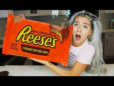 WORLDS BIGGEST CANDY! THE GIANT CANDY EXPERIMENT CHALLENGE DIY! REESES, SNICKERS, HERSHEY'S, YORK