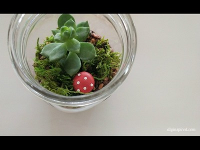 DIY Craft: How to Make a Mason Jar Terrarium with Succulents