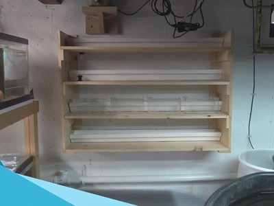 #434: HOW TO: DIY Fry Rack Installed on Fishroom Wall Part 2 - DIY Wednesday