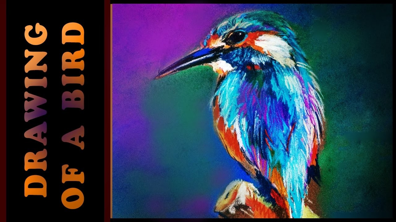 How to draw a simple colorful bird - Not by polychromos pencils.How to Draw a Realistic Bird
