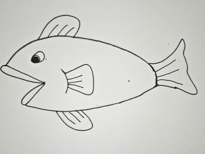 How to Draw Fish Step by Step