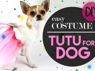 DOG TUTU EASY COSTUME - COSTUME PER CANE TUTU | DIY