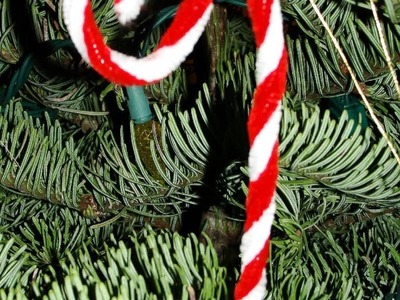 Chenille Stem (Pipe Cleaner) Candy Cane Ornament