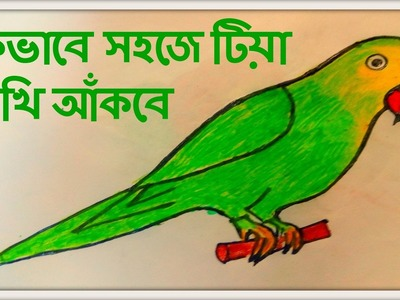 How to draw a parrot with marker pen and color pastel  easily step by step