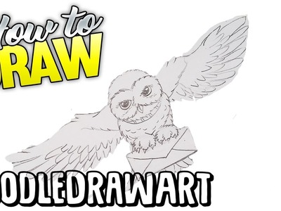 How to Draw Hedwig Step by Step Drawing Tutorial