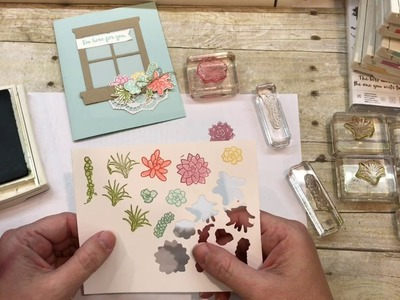 How to make a Beautiful Oh So Succulent Window Card