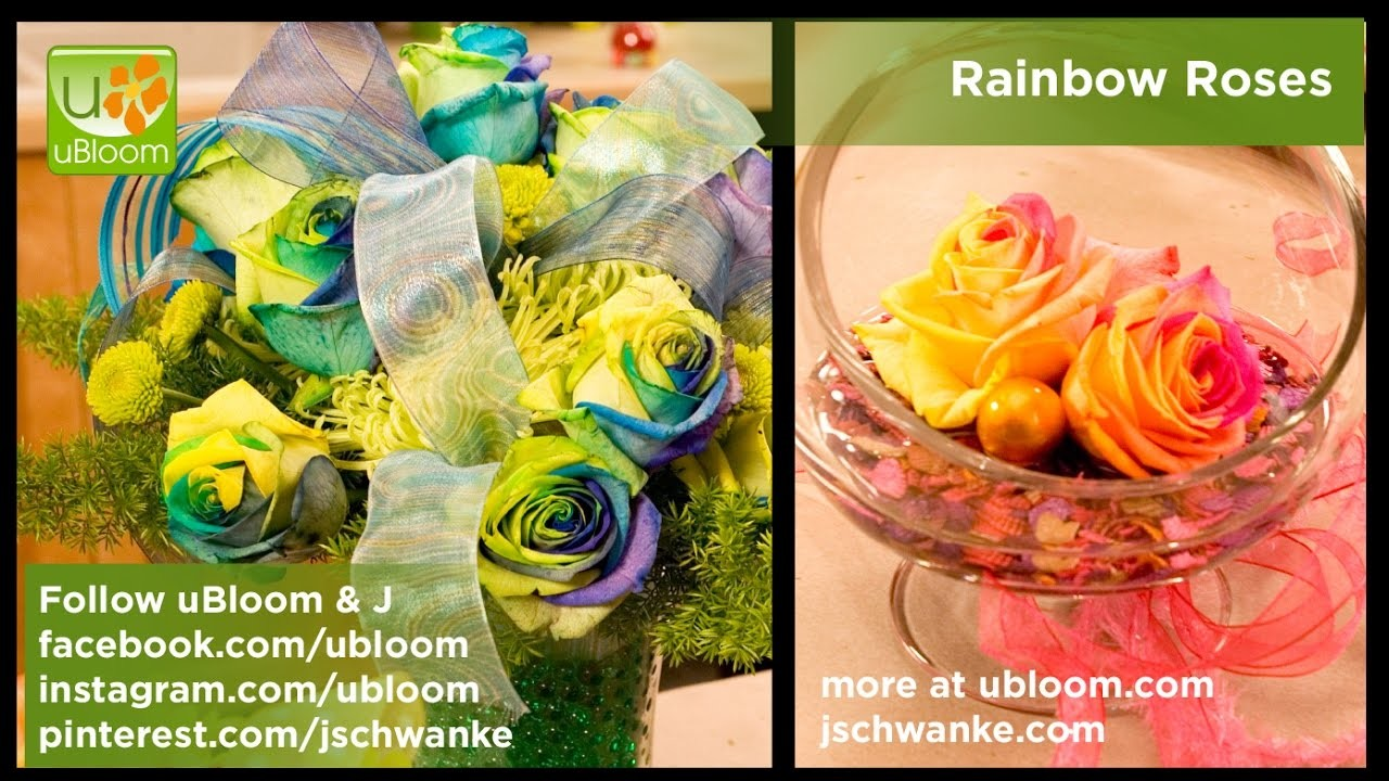 How to Make Arrangements with Rainbow Roses!