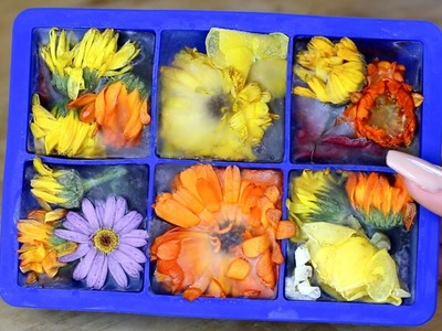 How to make edible flower ice cubes (tutorial)