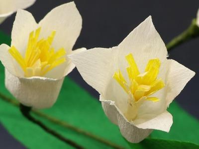 Paper Flowers Craft - Duplex Crepe Paper Flower (Very Easy)
