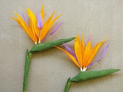 ABC TV | How To Make Bird Of Paradise Paper Flower From Crepe Paper - Craft Tutorial