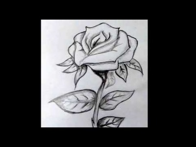 Copy of How To Draw A RosE. Step By Step Tutorial. Flower Drawing Tutorial