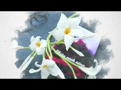 DIY - Craft tutorial - How to make paper flower - Fragipane  -  by crepe paper - hoa sứ giấy nhún