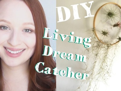 Living Dreamcatcher ♥ DIY With Air Plants and Spanish Moss
