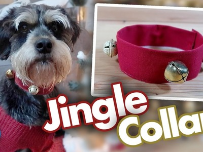 DIY Jingle Bell Collar For Dogs & Cats