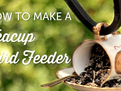 How to Make Teacup Bird Feeders | Crafts for Kids