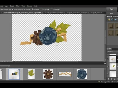 How to Trim Dropshadows using Adobe Photoshop Elements