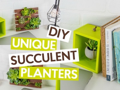 DIY Unique Succulent Planters
