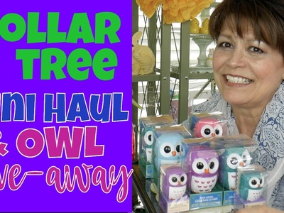 Dollar Tree Mini-Haul, Spring and DIY Readiness - Get Ready for Spring Do-it-Yourself Fun!