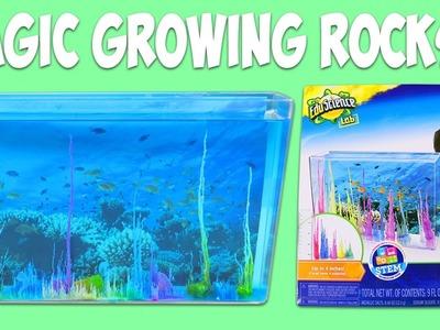 EduScience Magic Rocks Fun & Easy DIY Science Experiment Growing Rocks in a Water Tank!