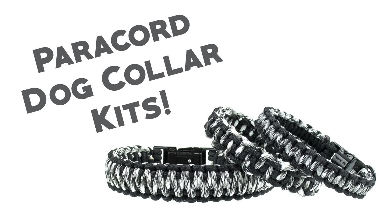Diy Dog Collar Kits