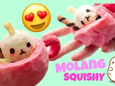 DIY Molang in a Coffee Cup Squishy + SQUISHY MEETUP