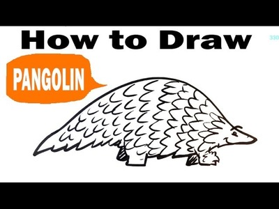 How to Draw a Pangolin - Cute - Easy Pictures to Draw