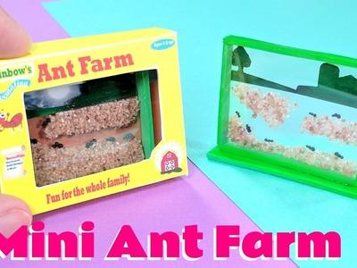 DIY Realistic Miniature Ant Farm