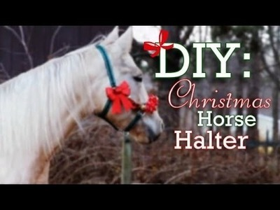 DIY: Christmas Horse Halter!