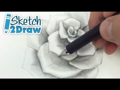 How to Shade a Rose (Pencils)