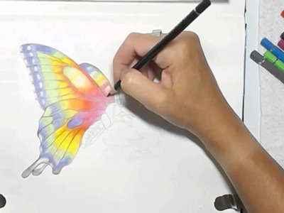 Painting a Watercolor Pencils Butterfly by Dion Dior