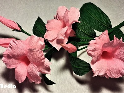 How to make an easy diy origami mandevilla paper flower. making flower by crepe paper step by step