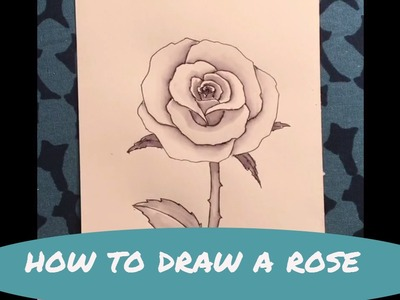 How to Draw a Rose MIMI'S SKETCHBOOK