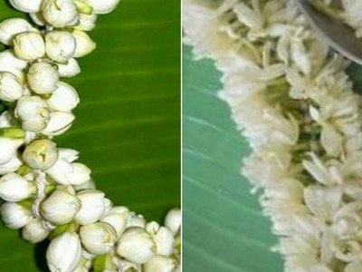 How to string Flower Garland | Arrangement | Veni Pelli - Traditional Way
