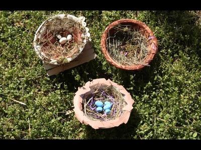 DIY Bird Nests | Kaplan Early Learning Company