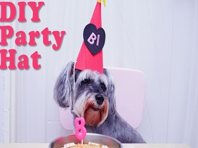 DIY Quick & Easy Party Hat