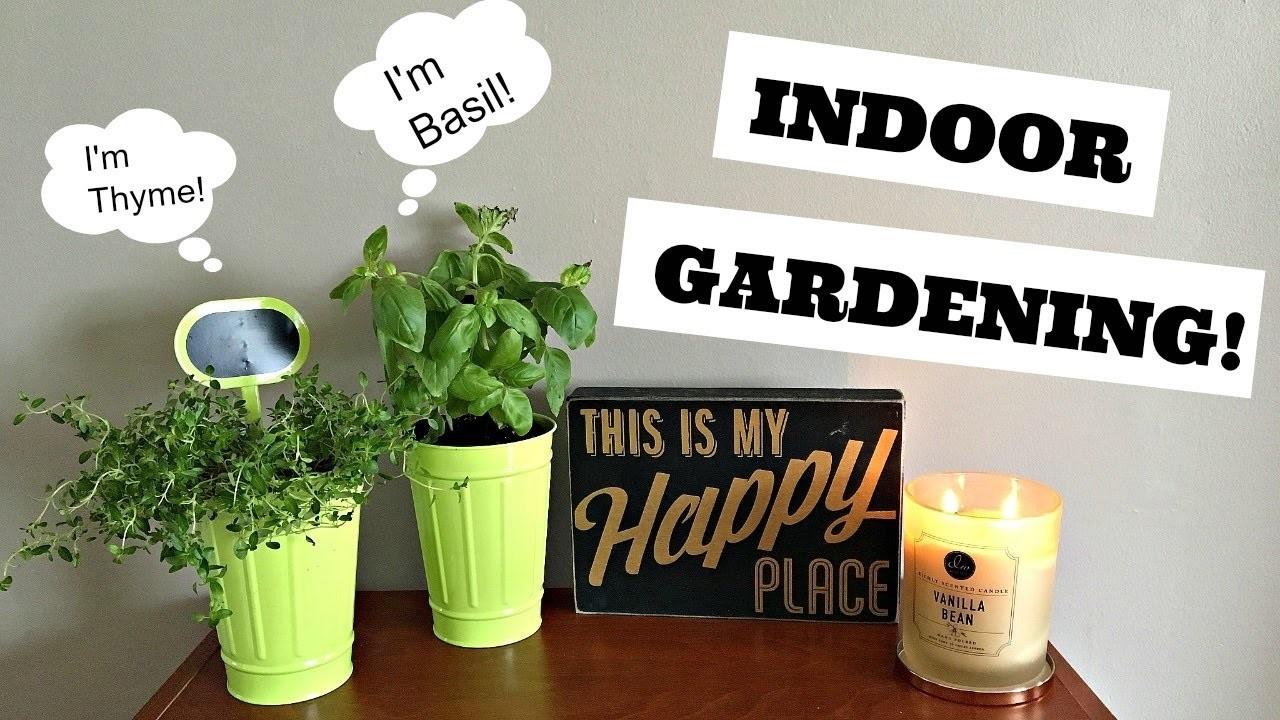 How To Grow An Indoor Herb Garden S T