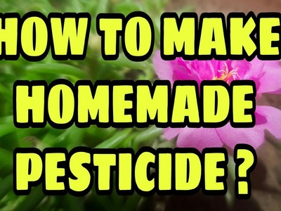 How to make Homemade Pesticide? | 24 April, 2017