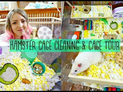 HAMSTER CAGE CLEANING & CAGE TOUR | Hamster DIY Platform FAIL ????????