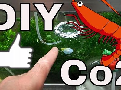 How To Make a DIY Co2 Bottle And Bell For Your  Shrimp Aquarium. Marks Shrimp Tanks