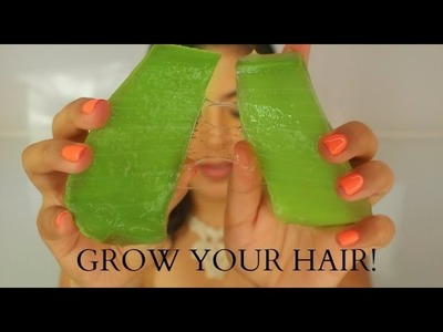 How To Grow Your Hair Using Aloe Vera  D.I.Y