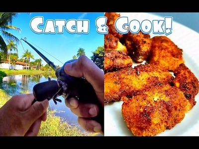Snakehead Catch & Cook Part 2! DIY How to Cook Spicy Snakehead Nuggets!