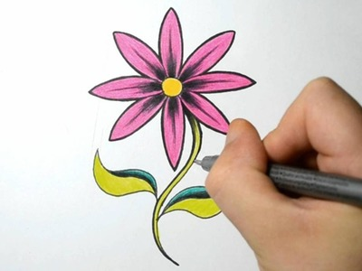 How to Draw a Simple Flower - Hot Pink Daisy