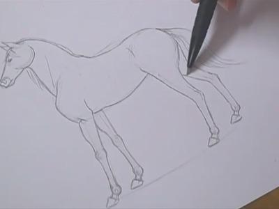 Tutorial - Como desenhar cavalos. How to draw horses