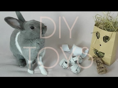 DIY RABBIT TOYS!! | Rabbit care